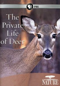 The Private Life of Deer