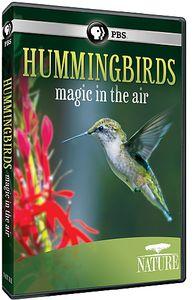 Nature: Hummingbirds