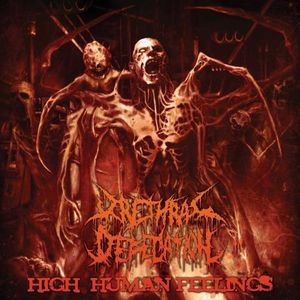 High Human Feelings [Import]