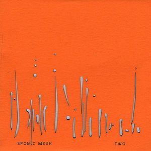 Tegleg Records: Sponic Mesh Two /  Various