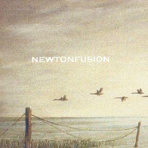 Newtonfusion