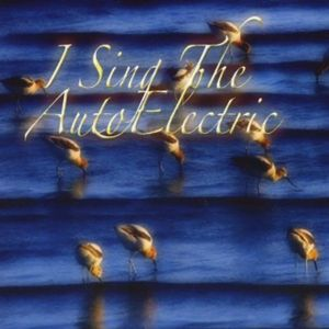 I Sing the Autoelectric