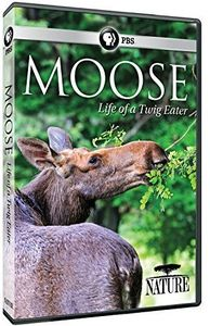 Nature: Moose - Life of a Twig Eater