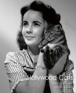HOLLYWOOD CATS