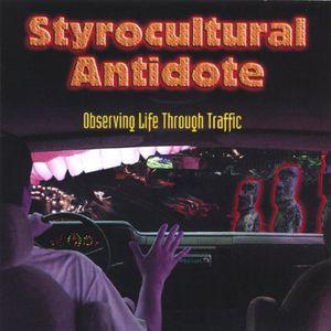Observing Life Through Traffic