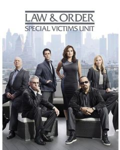 Law & Order - Special Victims Unit: Year Fourteen
