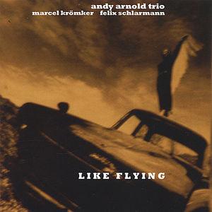 Like Flying