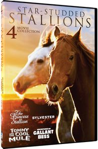 Star-Studded Stallions: 4 Heartwarming Horse Films