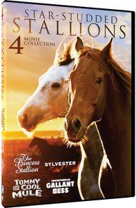 Star-Studded Stallions - 4 Heartwarming Horse
