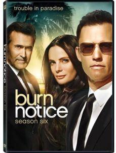 Burn Notice: Season 6