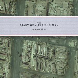 Diary of a Falling Man