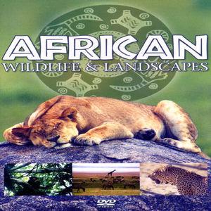 African Wildlife & Landscapes
