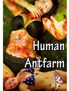 Human Antfarm