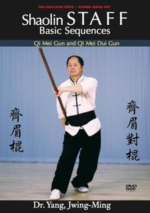Shaolin Staff Sequences