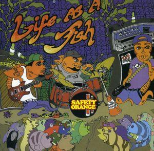 Life As a Fish