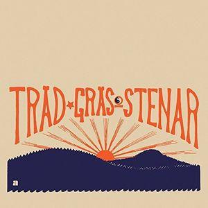 Trad Gras Och Stenar
