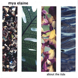 About the Tide