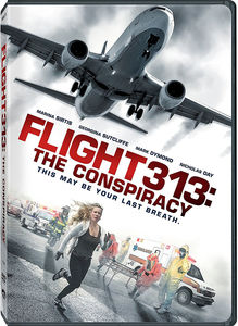 Flight 313: The Conspiracy