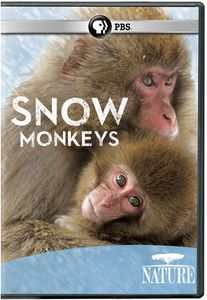 Nature: Snow Monkeys