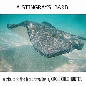 Stingrays' Barb