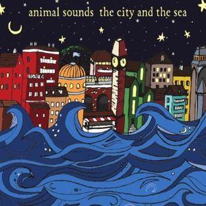 City & the Sea