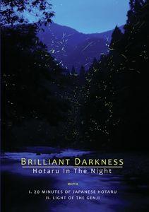 Brilliant Darkness