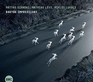 Bartok Impressions