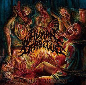 Cannibalistic Flesh Harvest