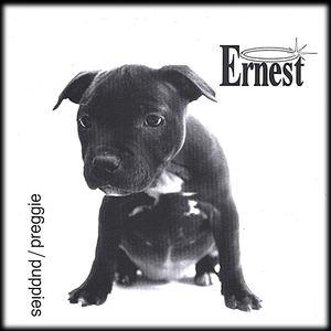 Aa Single Puppies/ Preggie