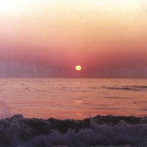 Ocean Calls