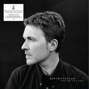 Dead Bees On A Cake (Expanded Edition) [Import] , David Sylvian