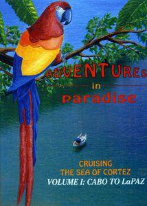 Adventures in Paradise: Cabo to la Paz
