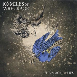 100 Miles of Wreckage