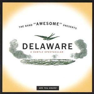 Delaware-A Subtle Spectacular