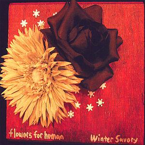 Winter Savory