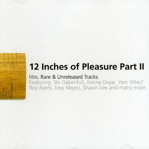 Twelve Inches of Pleasure 2 /  Various
