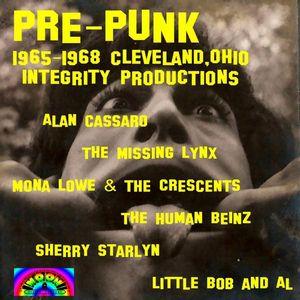 Pre-Punk 1965-1968 Clevelandohio Integrity Product