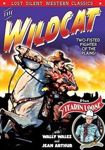 The Wildcat