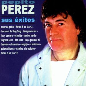 Sus Exitos [Import]