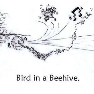Bird in a Beehive