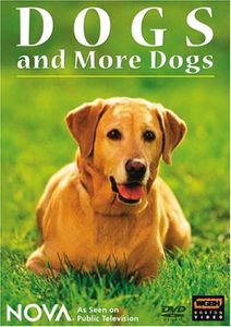 Dogs and More Dogs