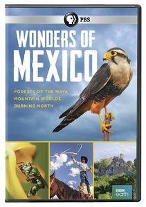 Wonders Of Mexico