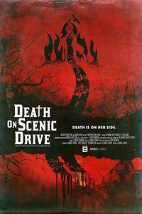 Death on Scenic Drive