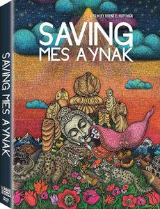 Saving Mes Aynak
