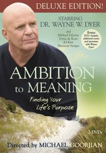 Ambition to Meaing