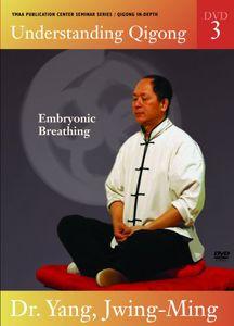 Vol. 3-Understanding Qigong