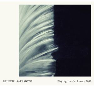 Playing the Orchestra 2013 [Import]