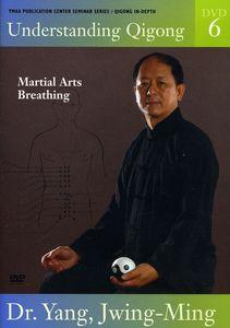 Vol. 6-Understanding Qigong