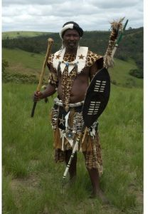 Warriors: Zulu Siege