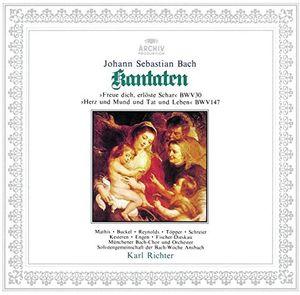 Bach: Cantatas BWV 30/ 147